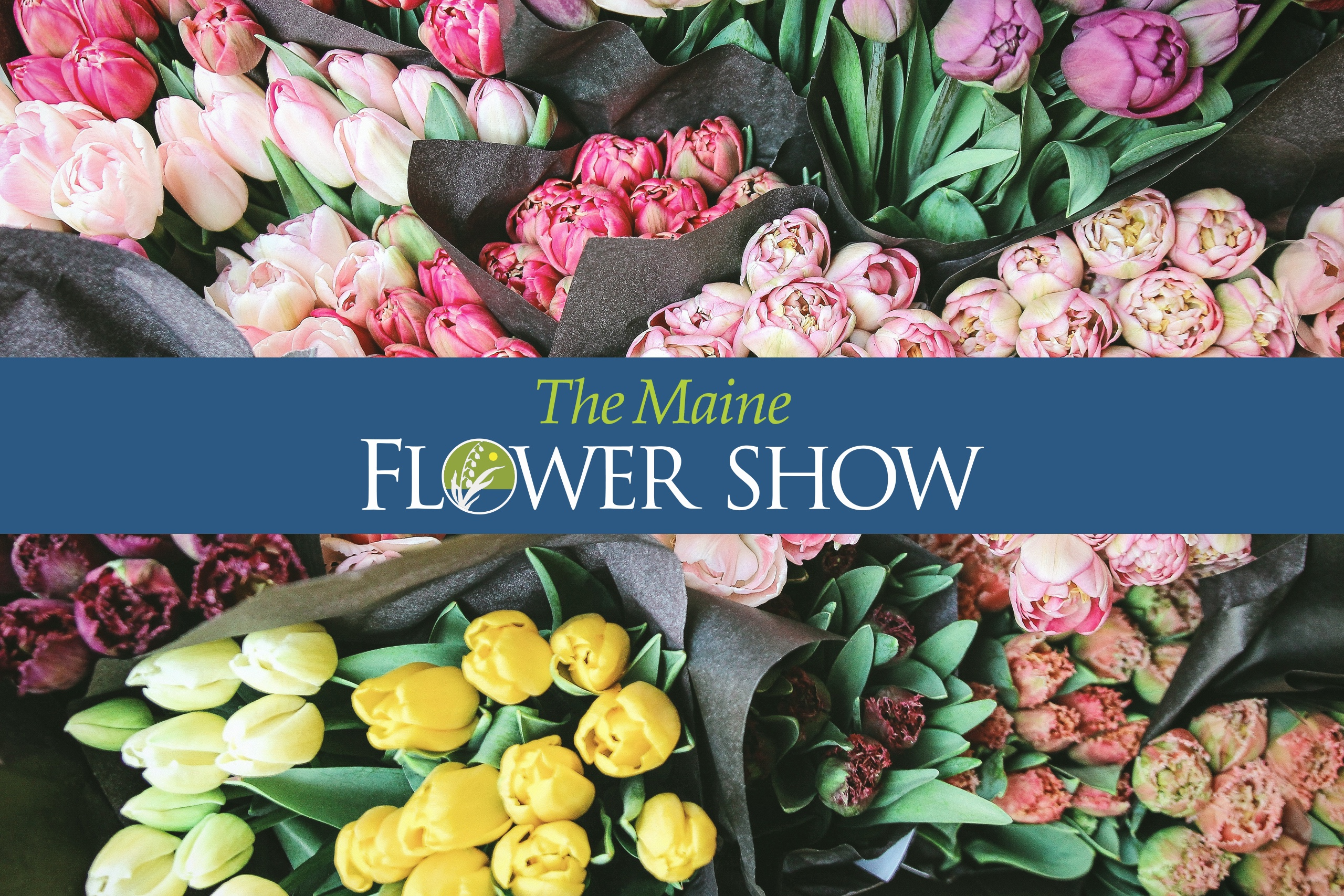 Flowers with Flower Show text overlay